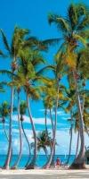 Hotel Riu Republica 5* (adullt only) DOMINICANA